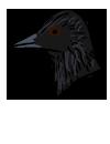 cydes_rock_crow.png