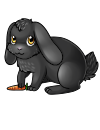 floppy_eared_bunny_karint_black.png