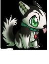 husky_lyrun_2.png