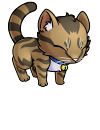 kitty_kitzi_brown_tabby.png