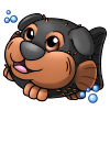 pupperfish_rottweiler.png