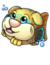 pupperfish_yellow.png