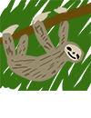 sloth_hanging_gracefully_from_a_branch.p