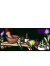 herbalist_table.png