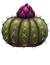 egg_blooming_cactus.png