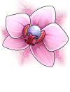 egg_orchid.png