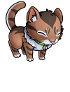 kitty_kitzi_long_haired_brown_tabby.png