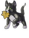 leaf_pupper_yellow_autumn.png