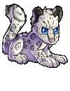 saber_lapis_snow_leopard.png